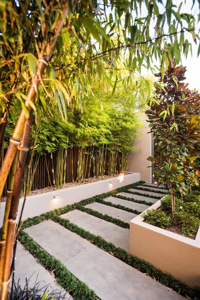 Mesmo em espaços pequenos é possível usar o bambu mossô