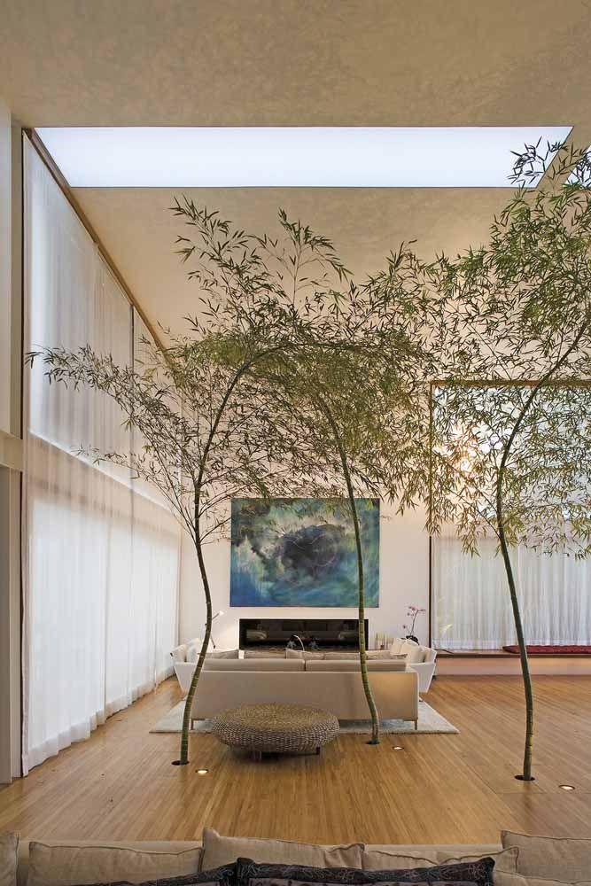 Sala de estar zen com bambu mossô