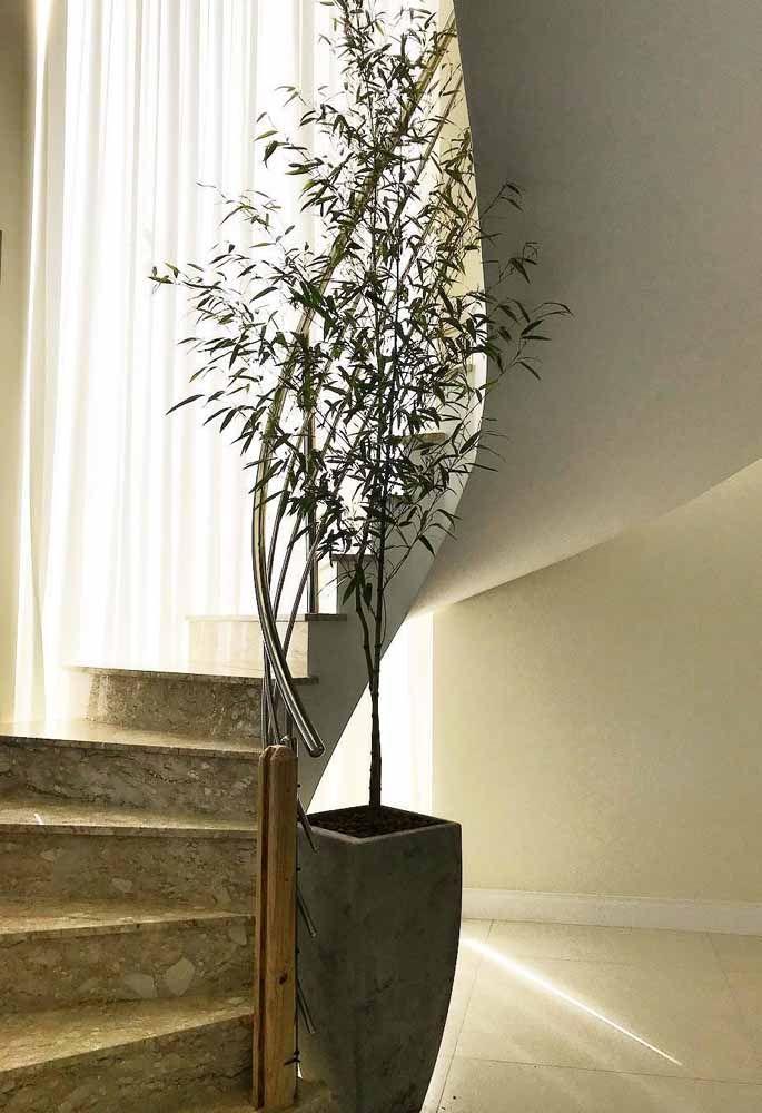Um único e discreto vaso de bambu mossô é o suficiente para decorar o pé dessa escada