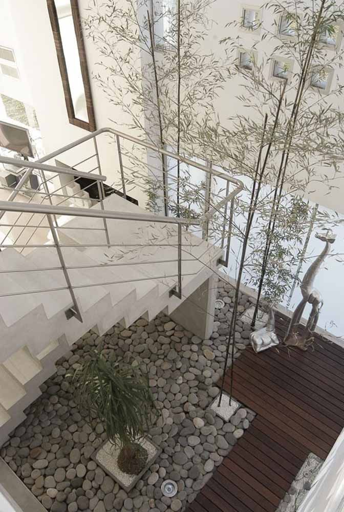 Os bambus mossô se aproveitaram muito bem do pé-direito da casa, atingindo uma altura que envolve todos os pavimentos