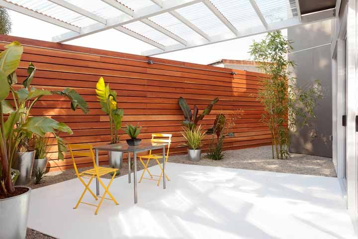 Bananeiras de jardim e bambu mossô