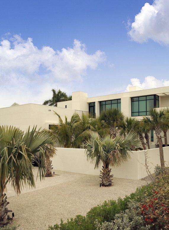 Para dar uma cara mais árida ao jardim de palmeiras azul invista em um caminho de areia e pedras