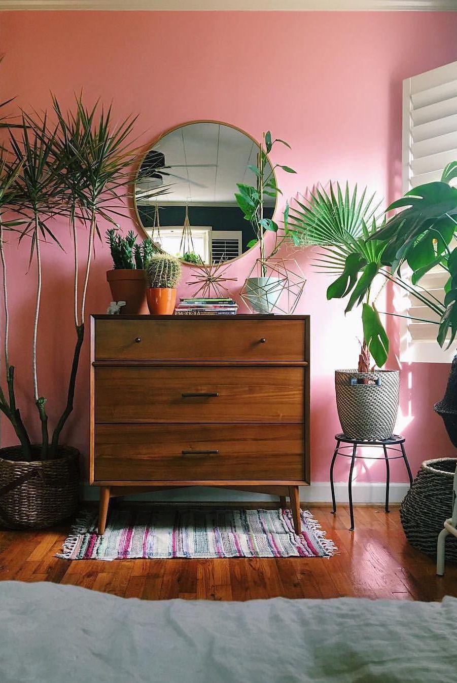 pequeno exemplar de palmeira Azul plantado no vaso aproveita a luz natural que vem pela janela do quarto
