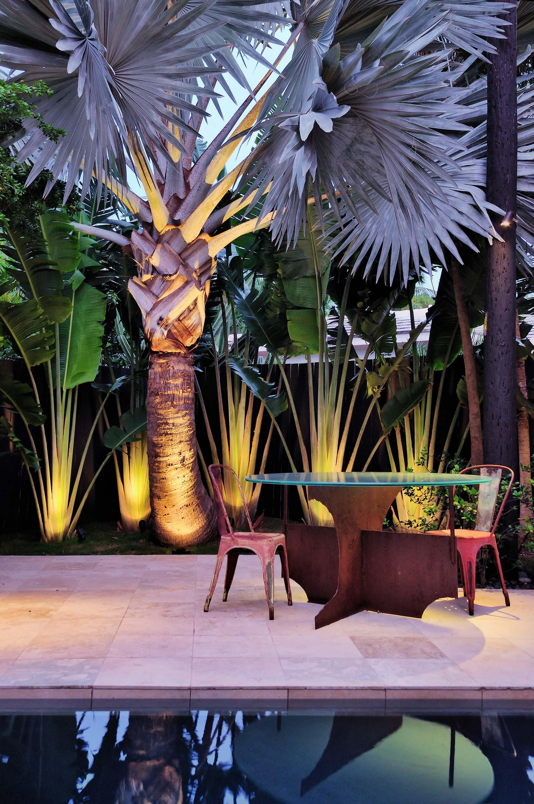 Se a palmeira azul já é linda de dia, imagina de noite? Ainda mais com uma iluminação toda especial e direcionada para ela
