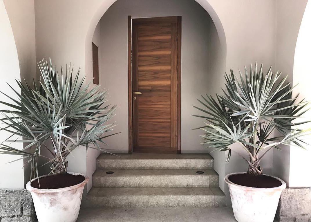 Nessa casa, os vasos de palmeiras azul recepcionam com muito charme e beleza aqueles que chegam