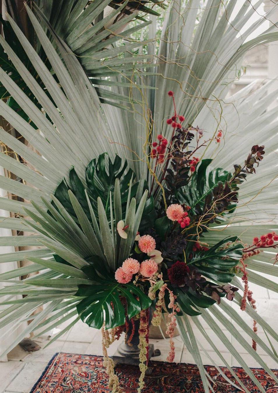 A palmeira azul também pode ser usada na decoração de festas