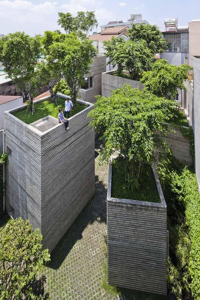Árvores em cima do telhado: um lugar de paz, frescor e tranquilidade