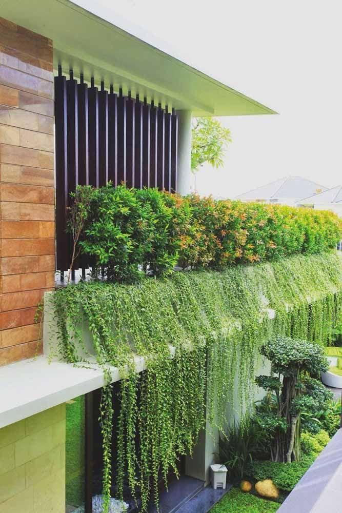 Folhagens pendentes são uma ótima opção para quem deseja que o telhado verde se destaque ainda mais na fachada