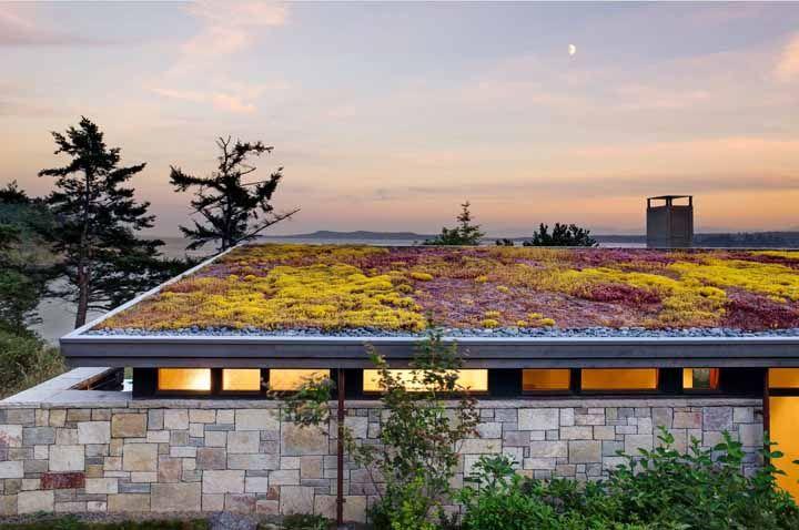 Telhado verde só no nome: aqui, as plantas de coloração amarela e roxa é que se destacam