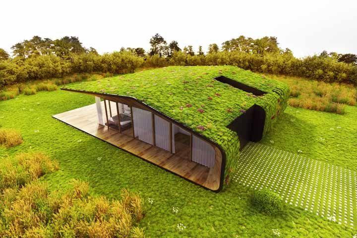 A grama que está no chão se estende até o telhado; de tão perfeita essa casa até parece de mentira
