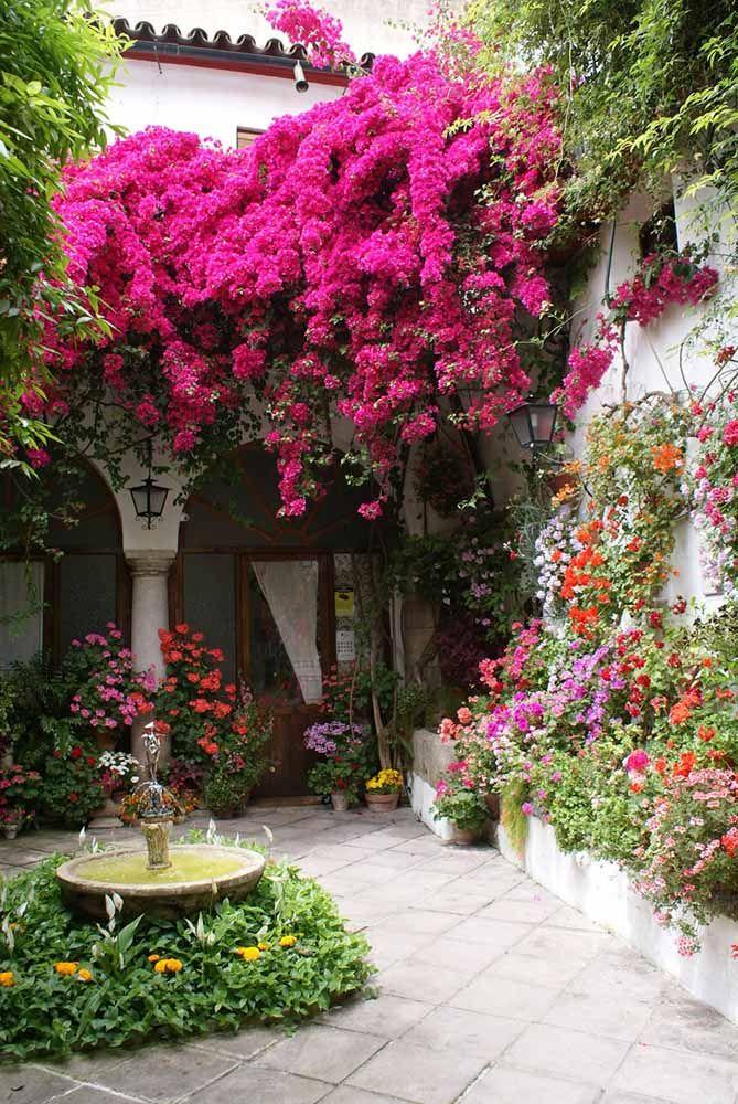 Primavera: uma flor escultural