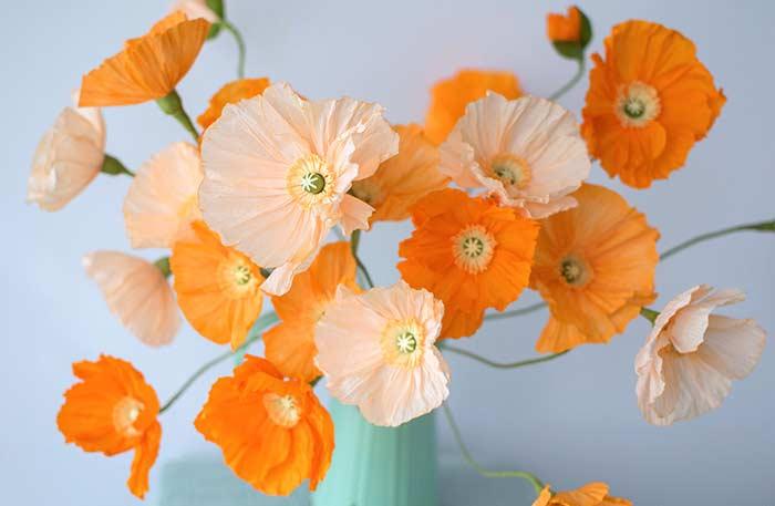 Flores de papel: sanfonado