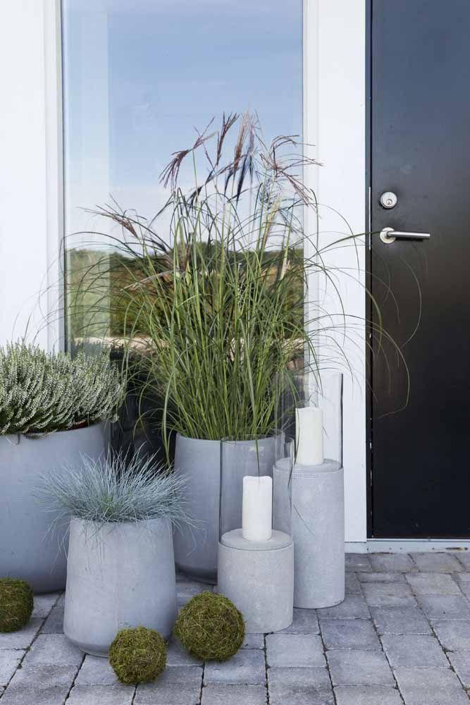 Diferentes tamanhos de vasos de cimento para diferentes espécies de plantas