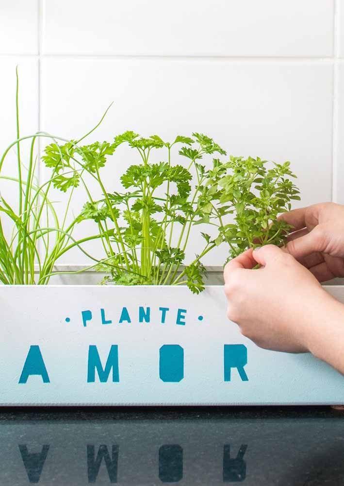 Para a horta caseira use uma jardineira capaz de receber mais de uma espécie de planta