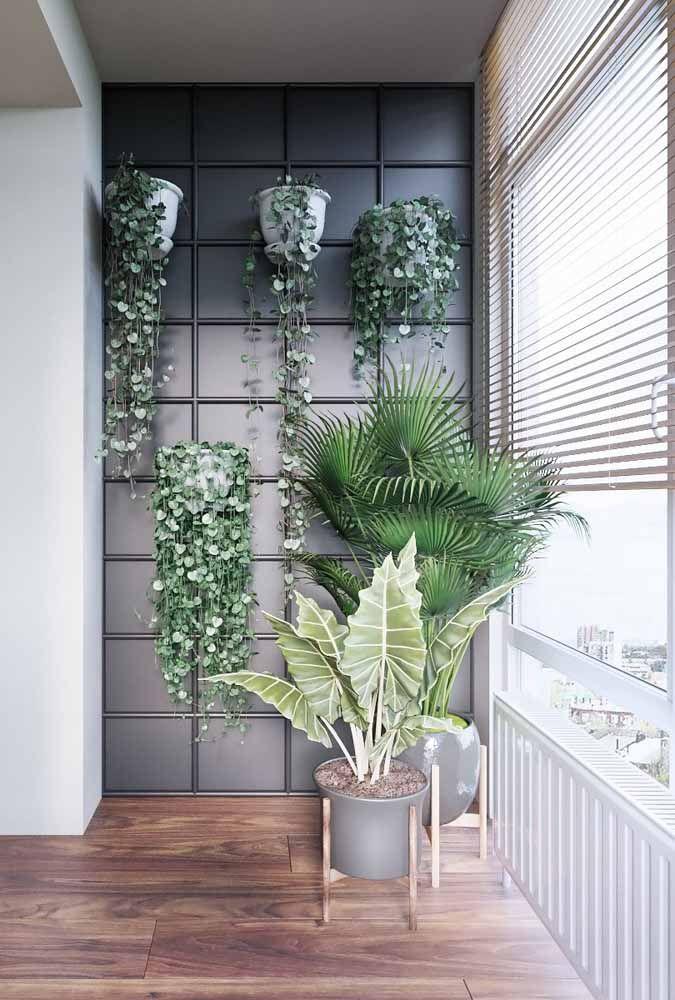 Para jardins verticais existem modelos de vasos em formato meia lua, dessa forma eles se adaptam melhor a parede