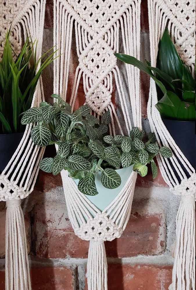 Uma composição rústica e romântica para a plantinha