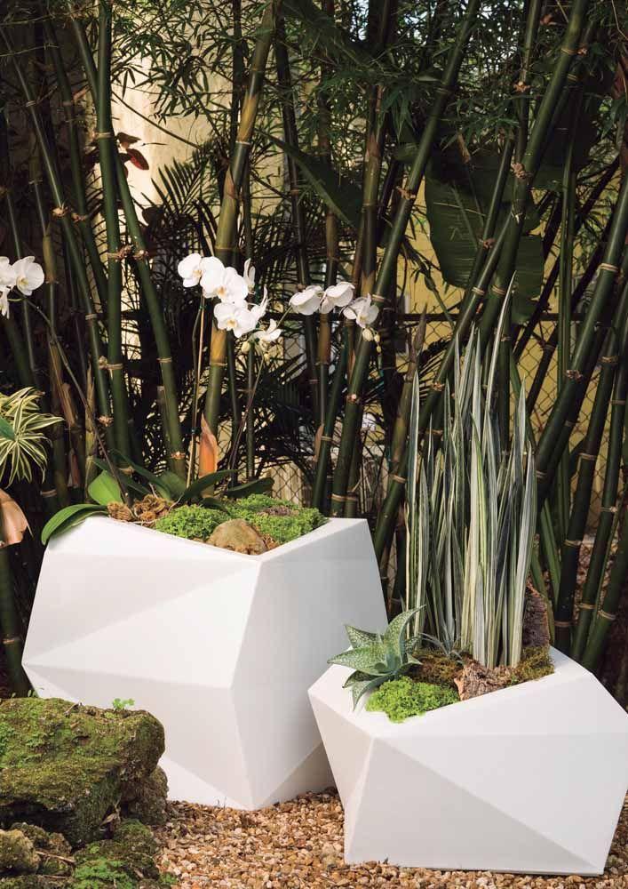 As sofisticadas orquídeas dessa imagem foram plantadas em vasos brancos de cerâmica