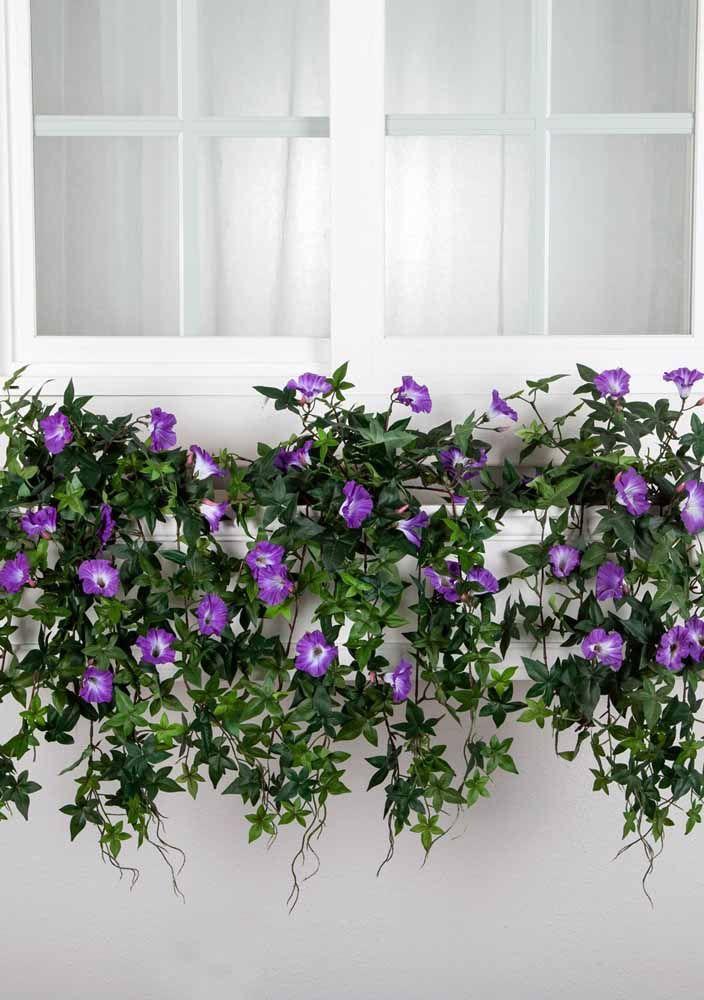 Flores na janela; artificiais, mas muito decorativas
