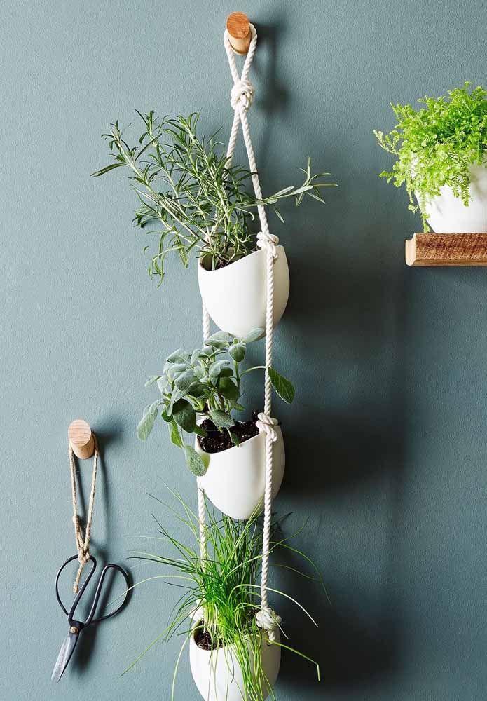 O suporte de corda garante o cultivo de três espécies diferentes de ervas