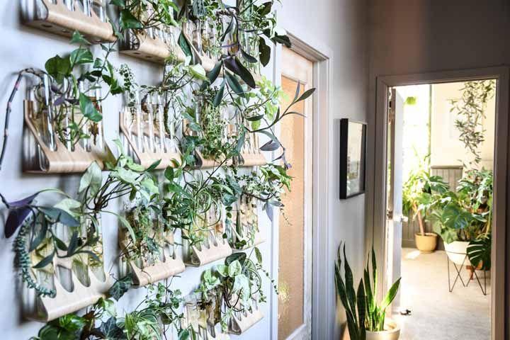 Uma ideia de jardim suspenso genial: plantas em tubos de ensaio!