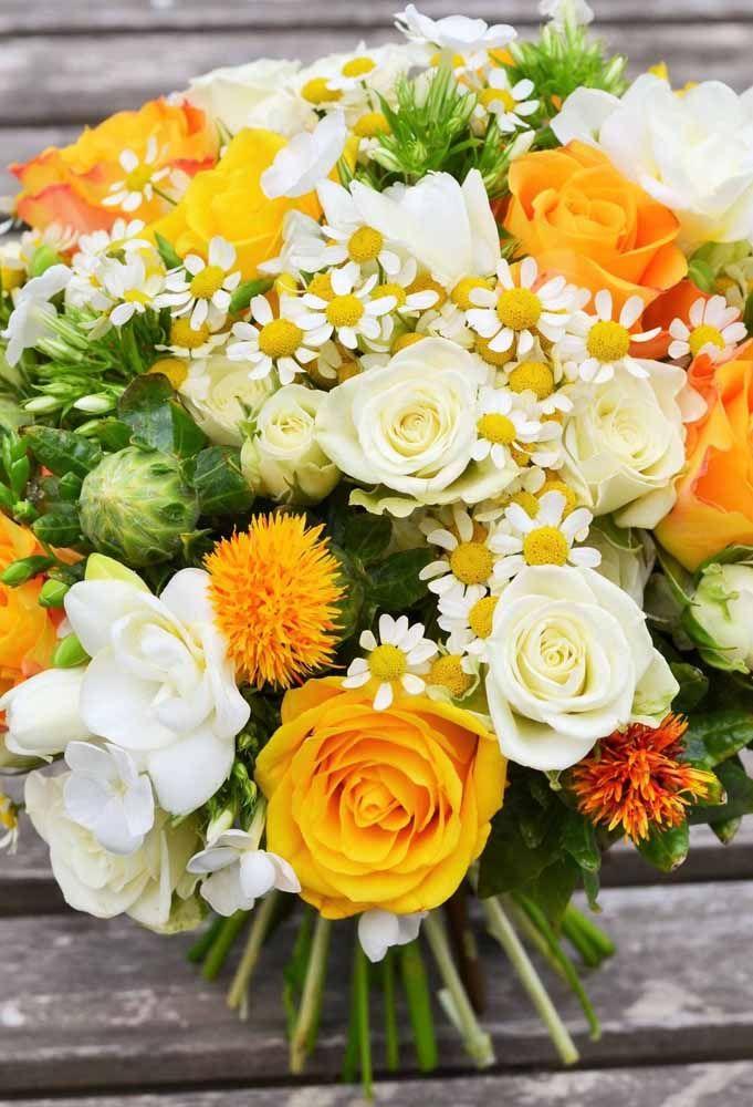 Um arranjo vibrante de flores amarelas e brancas, entre elas o Cartanus