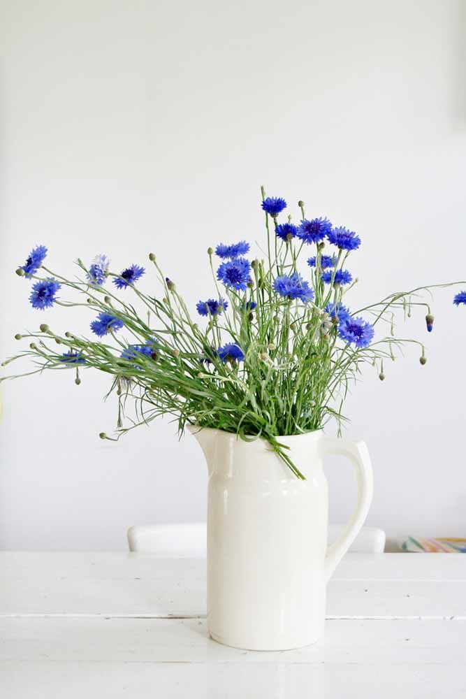 O azul intenso das centáureas contrasta lindamente com o bule de cerâmica branca