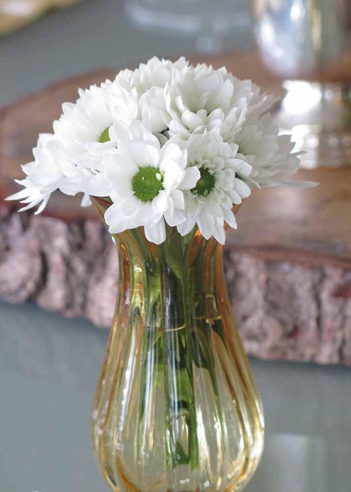 O miolo verde torna a madiba branca uma flor muito diferente das demais espécies brancas