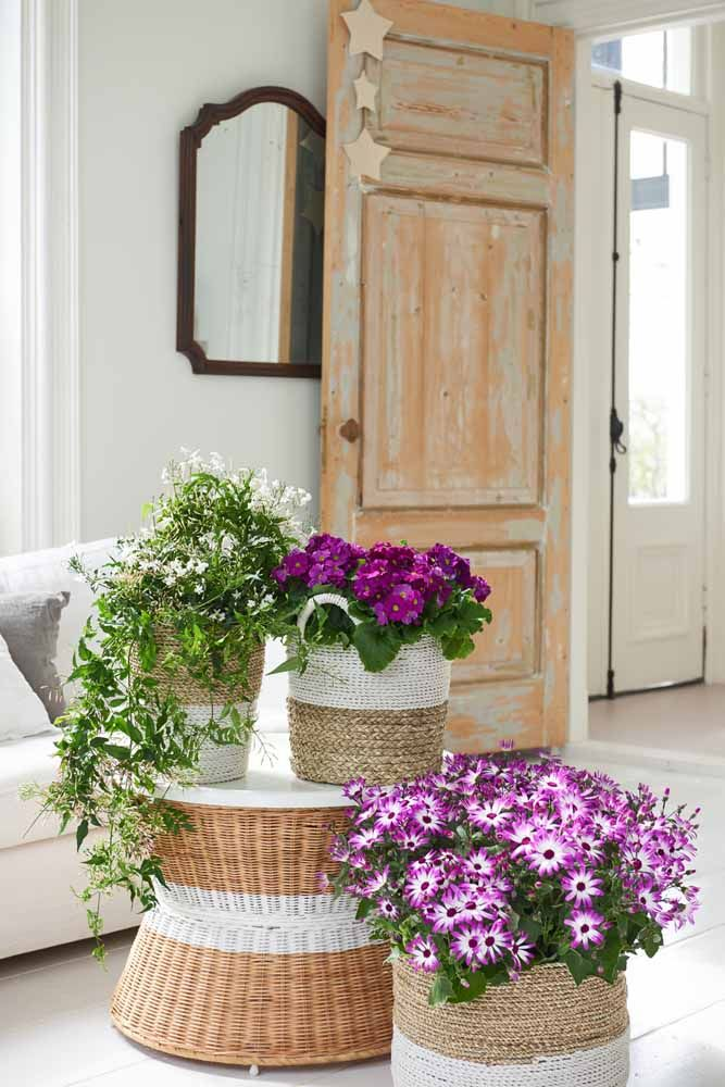 Um grande cesto para acomodar várias violetas; ao lado delas outras flores do campo completam a decoração