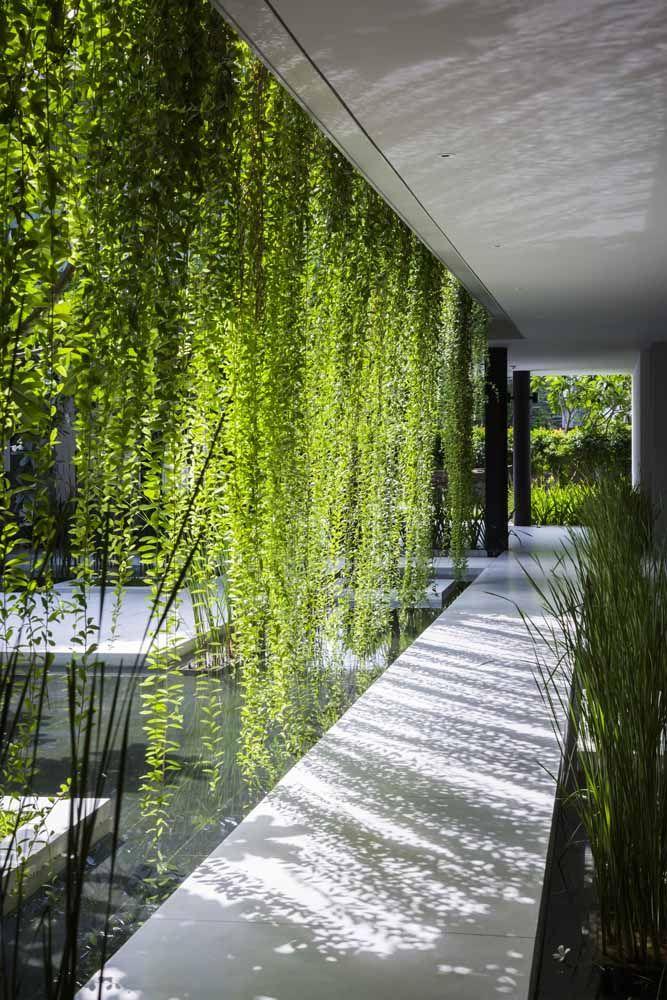 Cascata verde para decorar o corredor de passagem