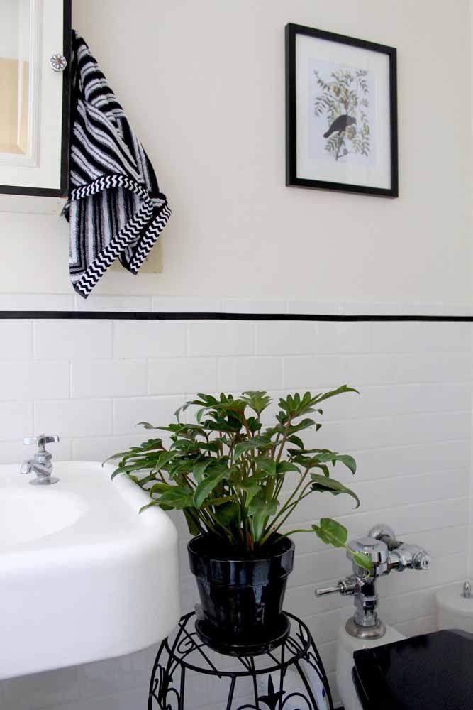 Banheiro preto e branco decorado com um gracioso imbé