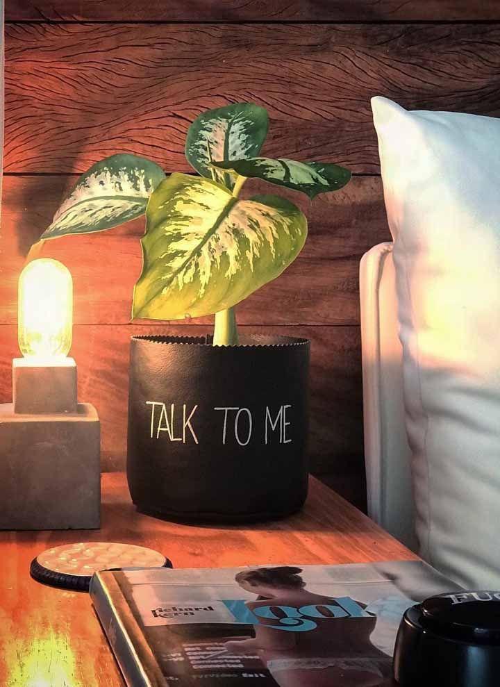 O cachepot dá a dica de como ajudar a manter a planta sempre bonita