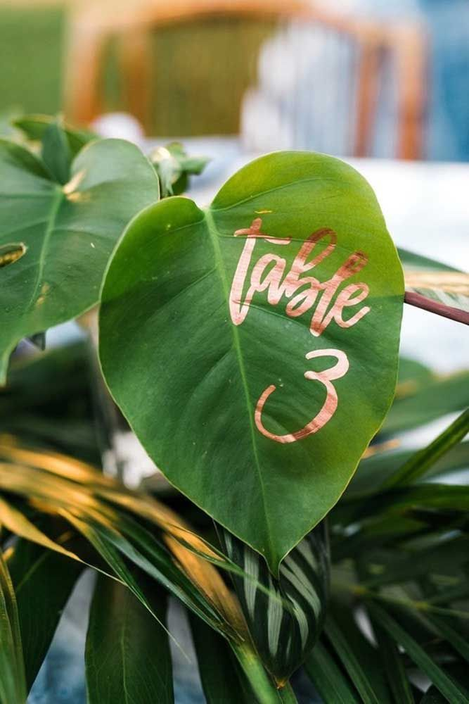 Mesas marcadas pelas plantas