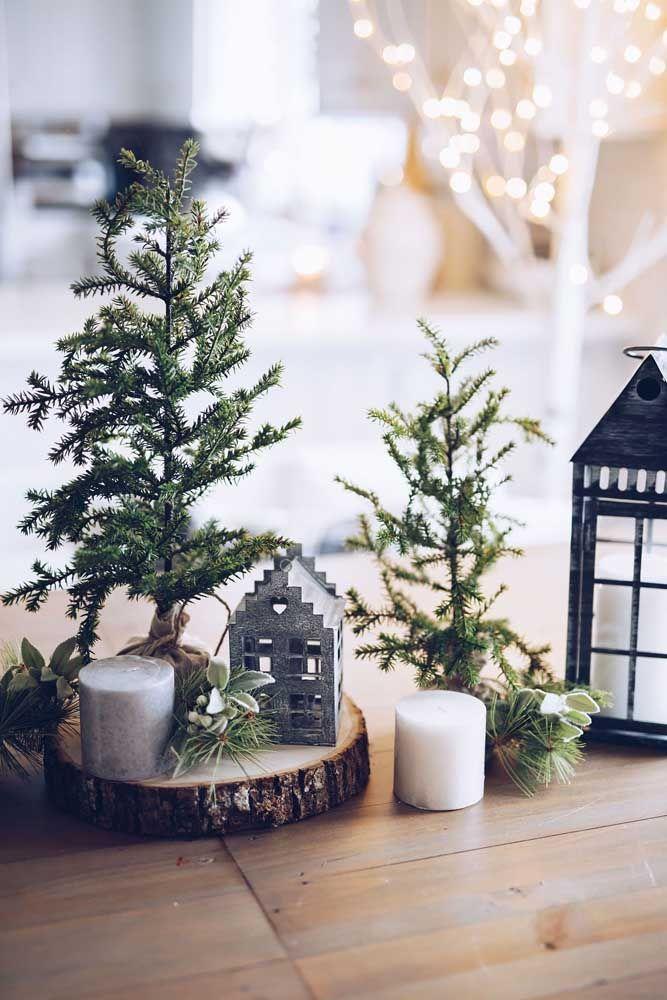 Um mini jardim para decorar a mesa de natal