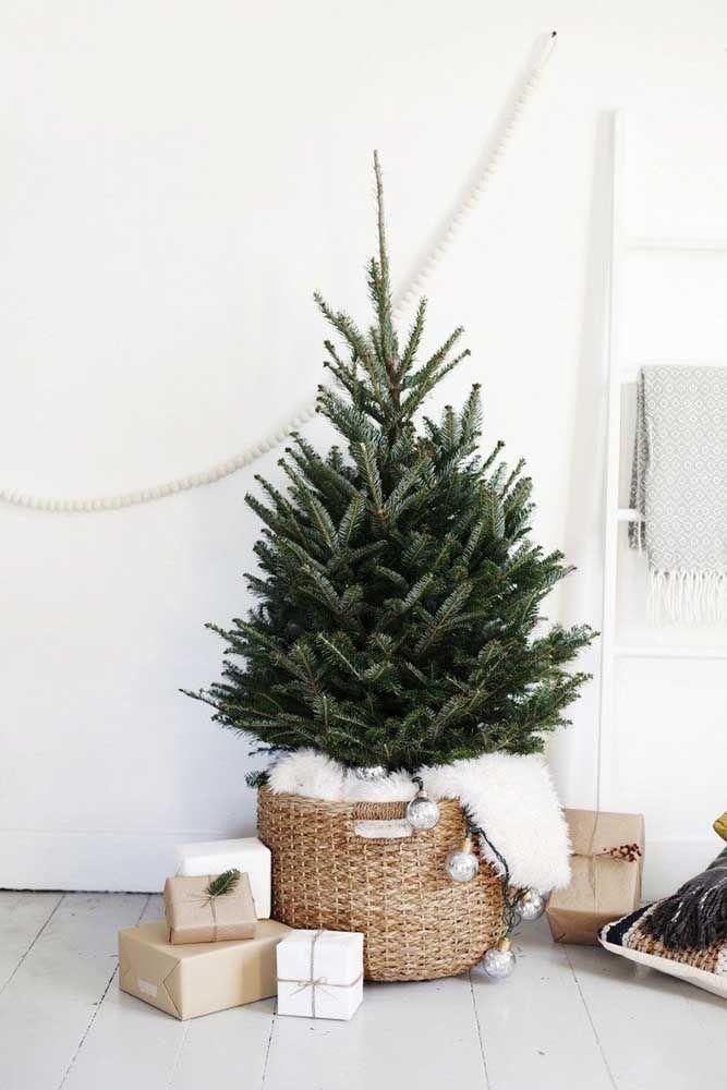 Pinheiro no cesto! Uma sugestão para mudar – de leve – a cara da árvore de natal