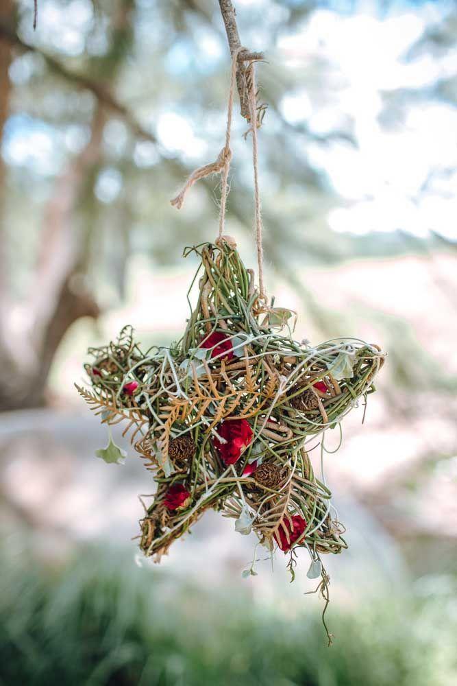 Uma estrela inspirada em ninhos de passarinho