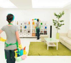 Limpeza de casa: geral