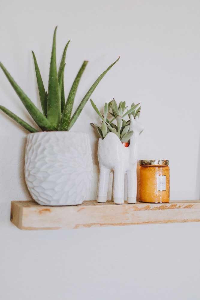 Vasinhos de cerâmica para acomodar os dois tipos de suculenta