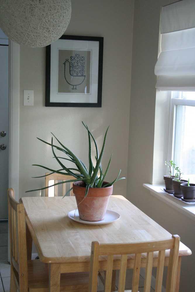 A mesa de jantar foi posicionada em um local estratégico da cozinha, onde a luz do sol consegue banhar o vaso de babosa