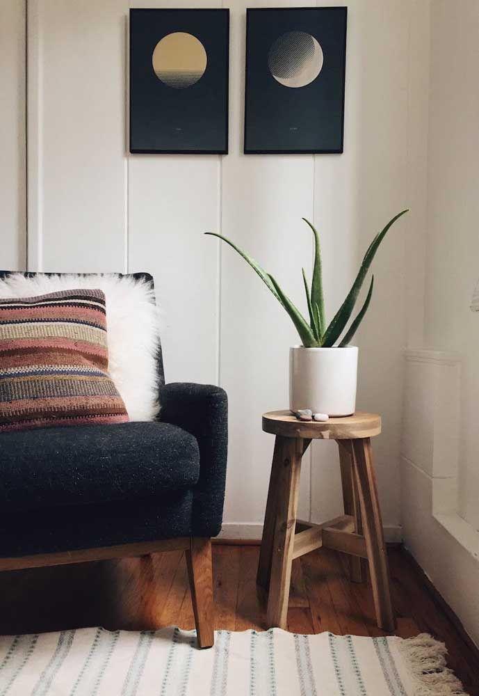 No cantinho da sala, esse vaso de babosa faz toda a diferença na decoração