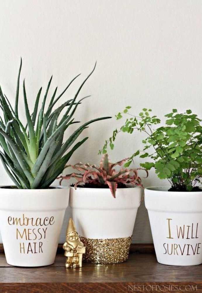 Aqui as plantas e os vasos carregam uma mensagem e uma energia muito positiva para casa