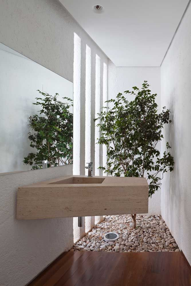A abertura lateral garante a iluminação adequada para a pequena árvore; as pedras completam o visual desse pequeno e simples jardim de inverno