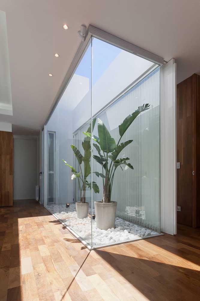 Dentro dos vasos, as bananeiras de jardim se esbaldam com a luz solar direta; o vidro impede que as intempéries climáticas afetem o interior da casa