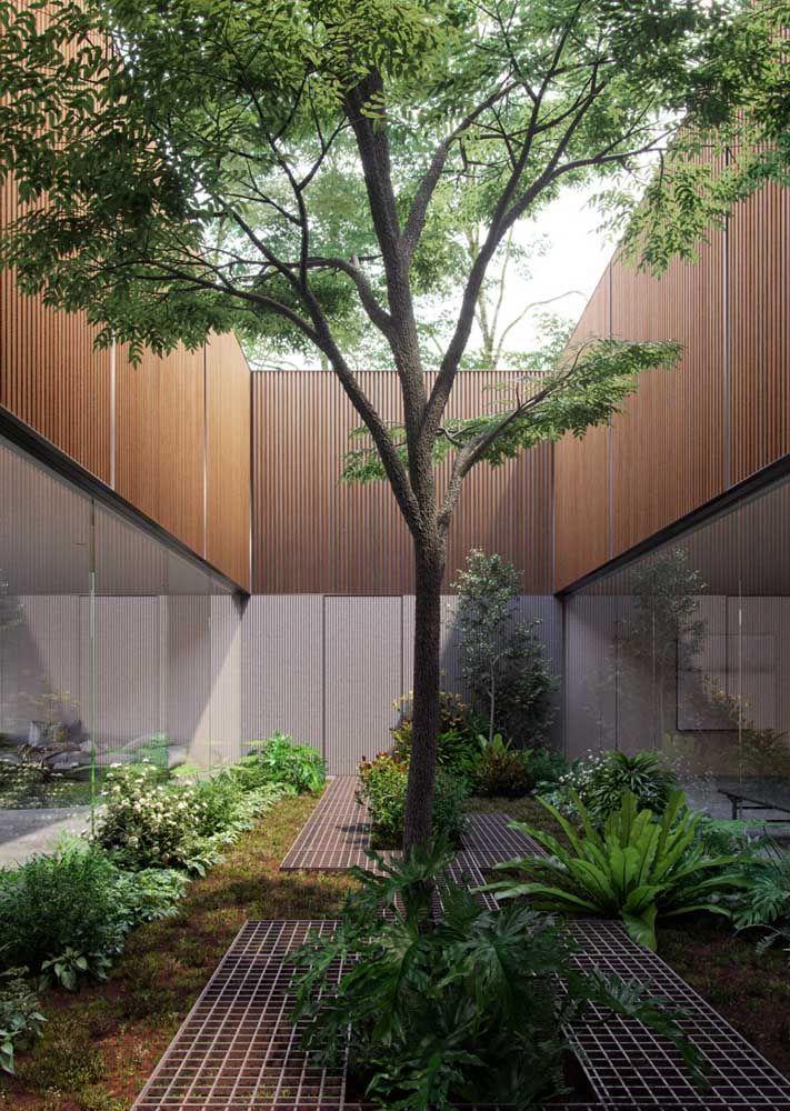Monte o jardim de inverno de modo proporcional ao espaço que você tem disponível; quanto maior a área mais interessante fica plantar uma árvore