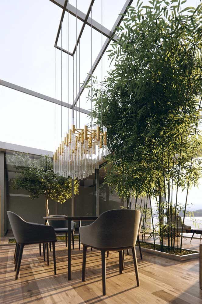 A fileira de bambus enche o espaço de paz e tranquilidade