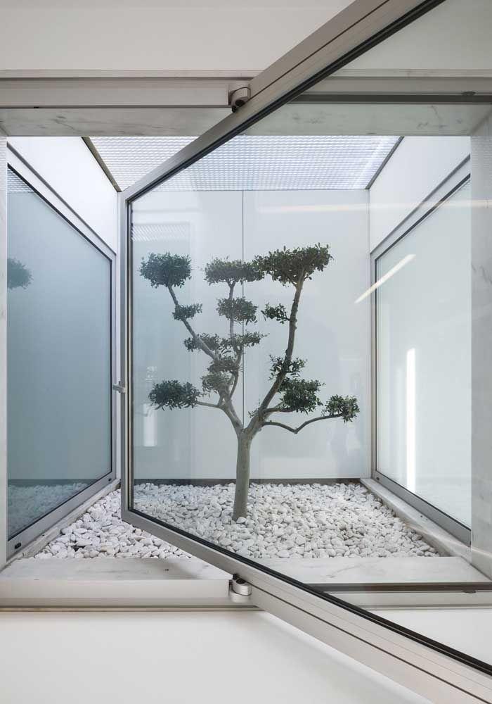 A janela moderna traz elegância ao simples jardim de inverno