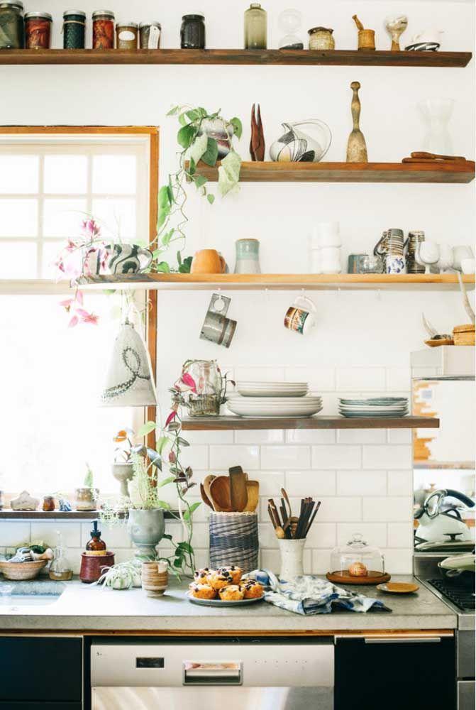Aqui nessa cozinha a jiboia cresce entre temperos, pratos e utensílios
