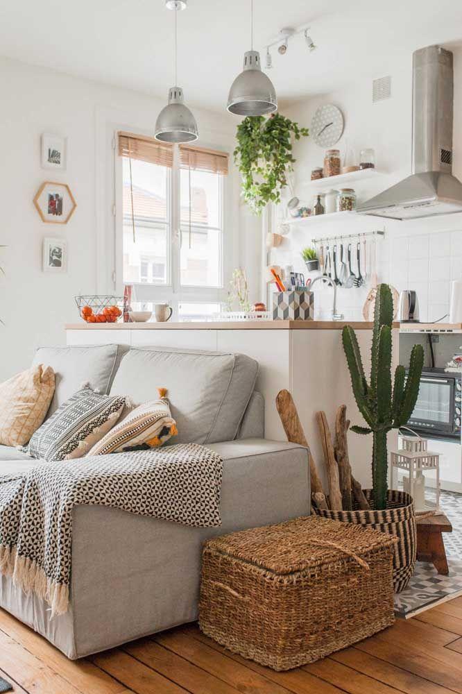 As decorações de estilo escandinavo, onde o fundo branco predomina, são ideias para a jiboia, destacando-as no ambiente