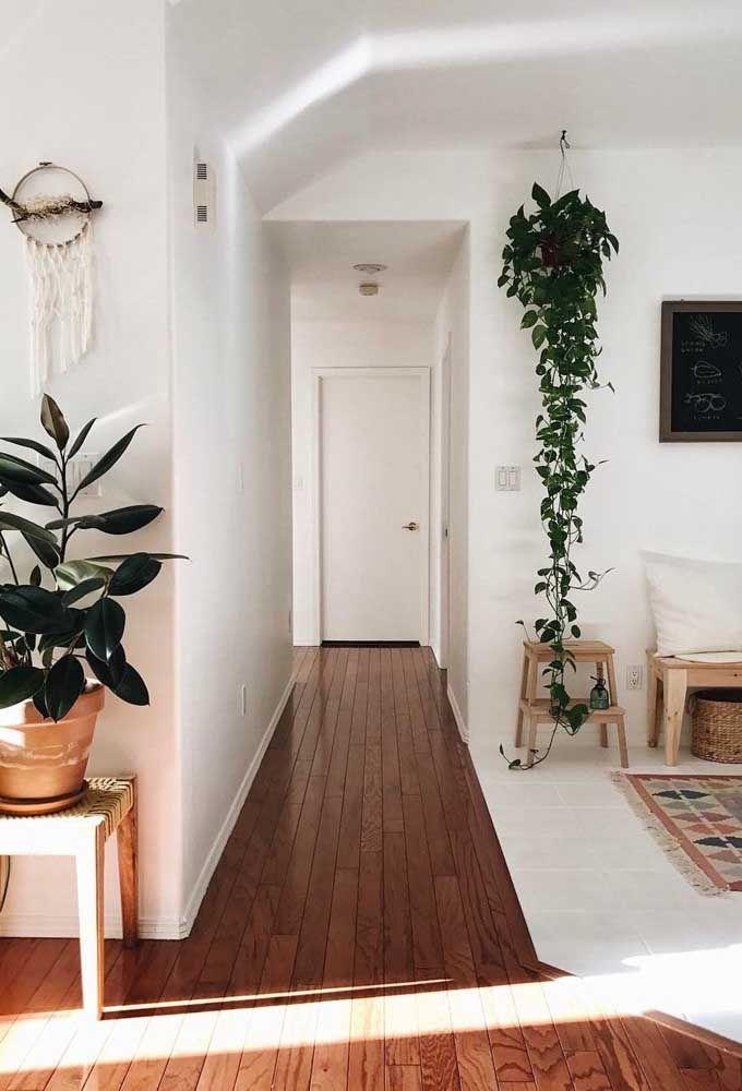 O apartamento de estilo boho não teve dúvidas: colocou logo uma jiboia pendente no lugar de maior destaque