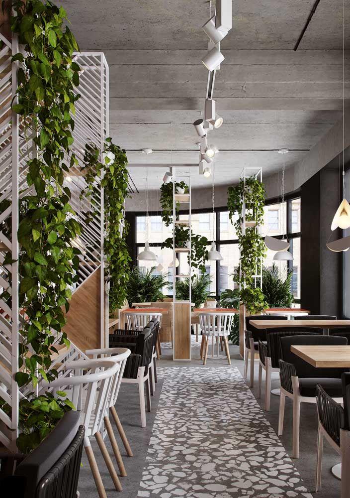 Espalhe jardins verticais de jiboias pelo ambiente