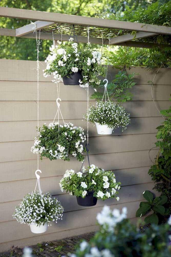 Jardim suspenso de azaleias e petúnias brancas
